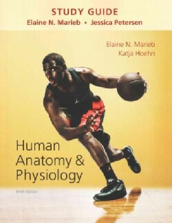 Human Anatomy & Physiology (Paperback)