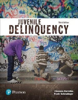 Juvenile Delinquency Access Code (Other merchandise)