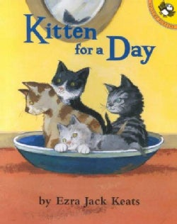 Kitten for a Day (Paperback)