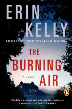 The Burning Air (Paperback)