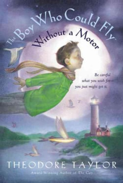 The Boy Who Could Fly Without a Motor (Paperback)
