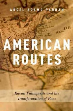 American Routes: Racial Palimpsests and the Transformation of Race (Hardcover)
