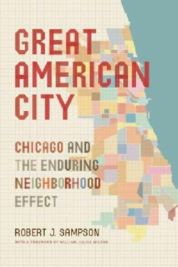 Great American City: Chicago and the Enduring Neighborhood Effect (Paperback)