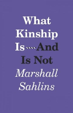What Kinship Is - and Is Not (Paperback)