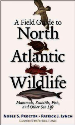 A Field Guide To North Atlantic Wildlife: Marine Mammals, Seabirds, Fish, And Other Sea Life (Paperback)