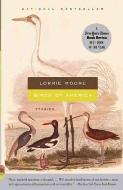 Birds of America (Paperback)