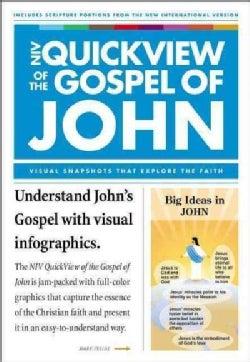 NIV Quickview of the Gospel of John: John and John 1 John (Paperback)