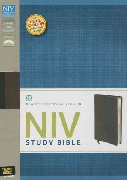 Holy Bible: New International Version, Chocolate/Black, Italian Duo-Tone, Study Bible (Paperback)