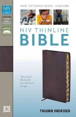 Holy Bible: New International Version, Burgundy, Bonded Leather, Thinline Bible (Paperback)