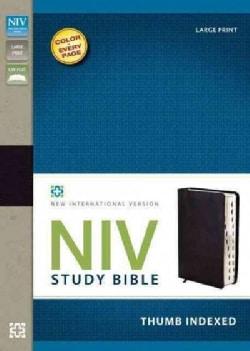 Holy Bible: New International Version Black Bonded Leather Study Bible (Paperback)