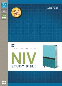 Holy Bible: New International Version Turquoise / Caribbean Blue Italian Duo-Tone Study Bible (Paperback)