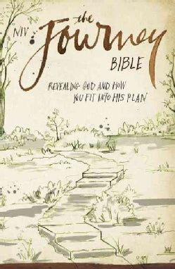 Holy Bible: New International Version, Revealing God and How You Fit Into His Plan (Paperback)
