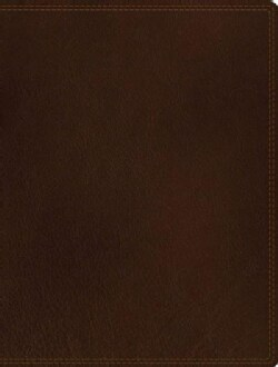 Journal the Word Bible: New International Version, Brown, Premium Leather, Reflect on Your Favorite Verses (Paperback)