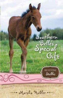 Southern Belle's Special Gift (Paperback)