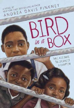 Bird in a Box (Paperback)