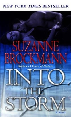 Into the Storm: A Novel (Paperback)