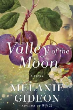 Valley of the Moon (Hardcover)
