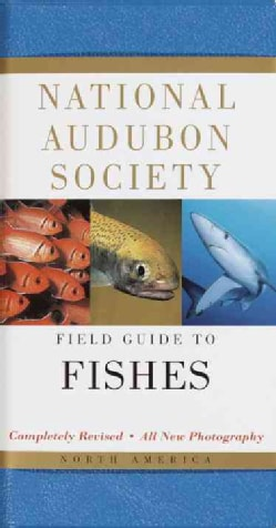 National Audubon Society Field Guide to Fishes: North America (Paperback)