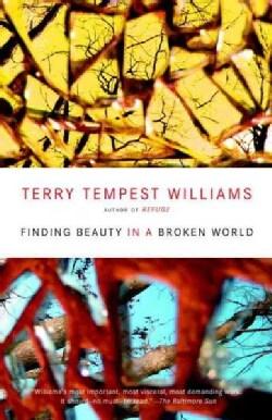 Finding Beauty in a Broken World (Paperback)