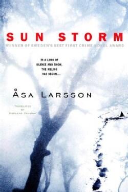 Sun Storm (Paperback)