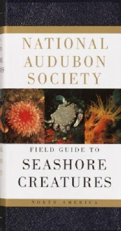 National Audubon Society Field Guide to North American Seashore Creatures (Paperback)