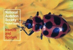 Familiar Insects and Spiders North America (Paperback)