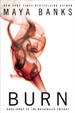 Burn (Paperback)