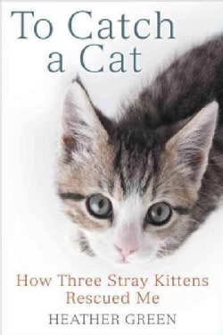 To Catch a Cat: How Three Stray Kittens Rescued Me (Paperback)