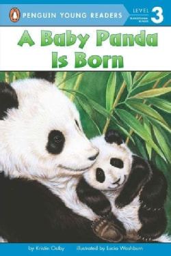 A Baby Panda Is Born (Paperback)