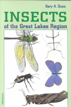 Insects of the Great Lakes Region (Paperback)