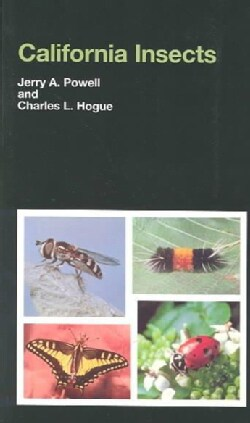 California Insects (Paperback)