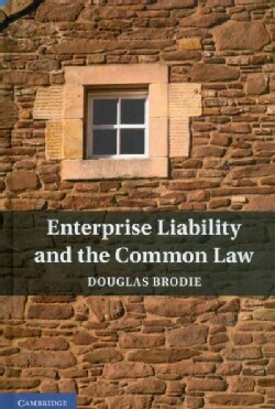 Enterprise Liability and the Common Law (Hardcover)