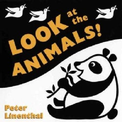 Look at the Animals! (Board book)