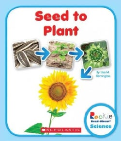 Seed to Plant (Paperback)