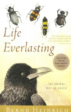 Life Everlasting: The Animal Way of Death (Paperback)