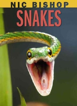 Snakes (Hardcover)