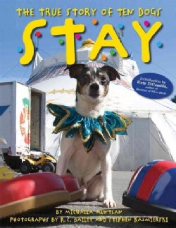 Stay: The True Story of Ten Dogs (Hardcover)