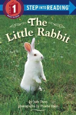 The Little Rabbit (Hardcover)