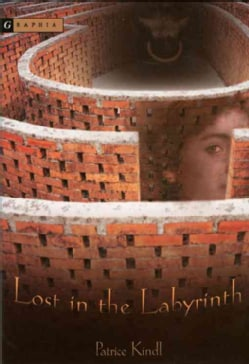Lost In The Labyrinth (Paperback)