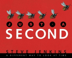 Just a Second: A Different Way to Look at Time (Hardcover)