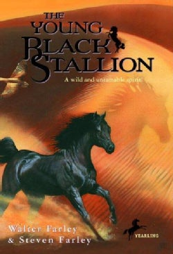 The Young Black Stallion (Paperback)