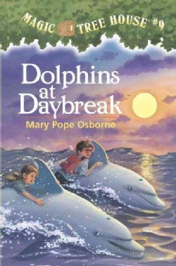 Dolphins at Daybreak (Paperback)
