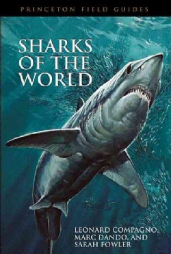 Sharks Of The World (Paperback)