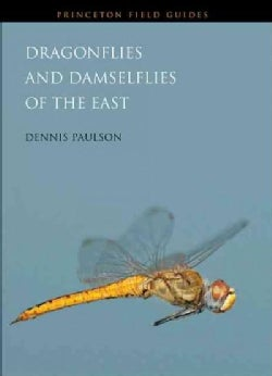 Dragonflies and Damselflies of the East (Paperback)