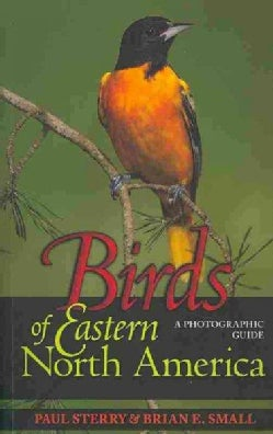 Birds of Eastern North America: A Photographic Guide (Paperback)