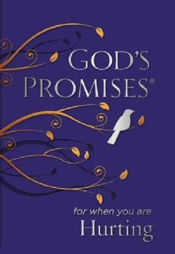 God's Promises for When You Are Hurting (Paperback)