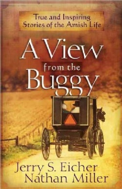 A View from the Buggy (Paperback)