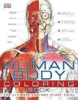 The Human Body Coloring Book (Paperback)
