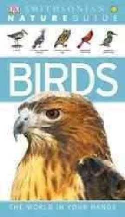 Birds (Paperback)