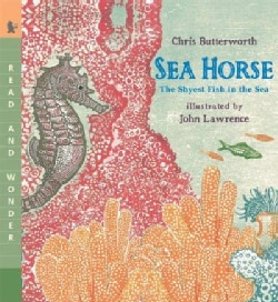 Sea Horse: The Shyest Fish in the Sea (Paperback)